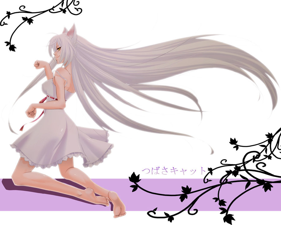 Anime Neko Girl With White Hair Image Id 151125 Image Abyss