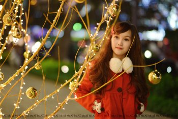 Preview Image 157571