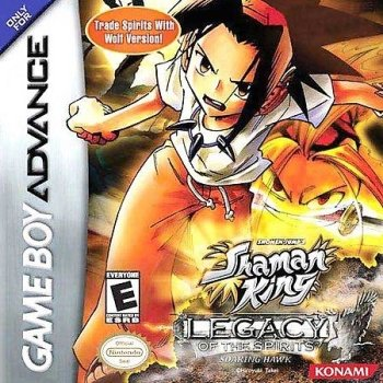 Shaman King: Legacy of the Spirits, Soaring Hawk