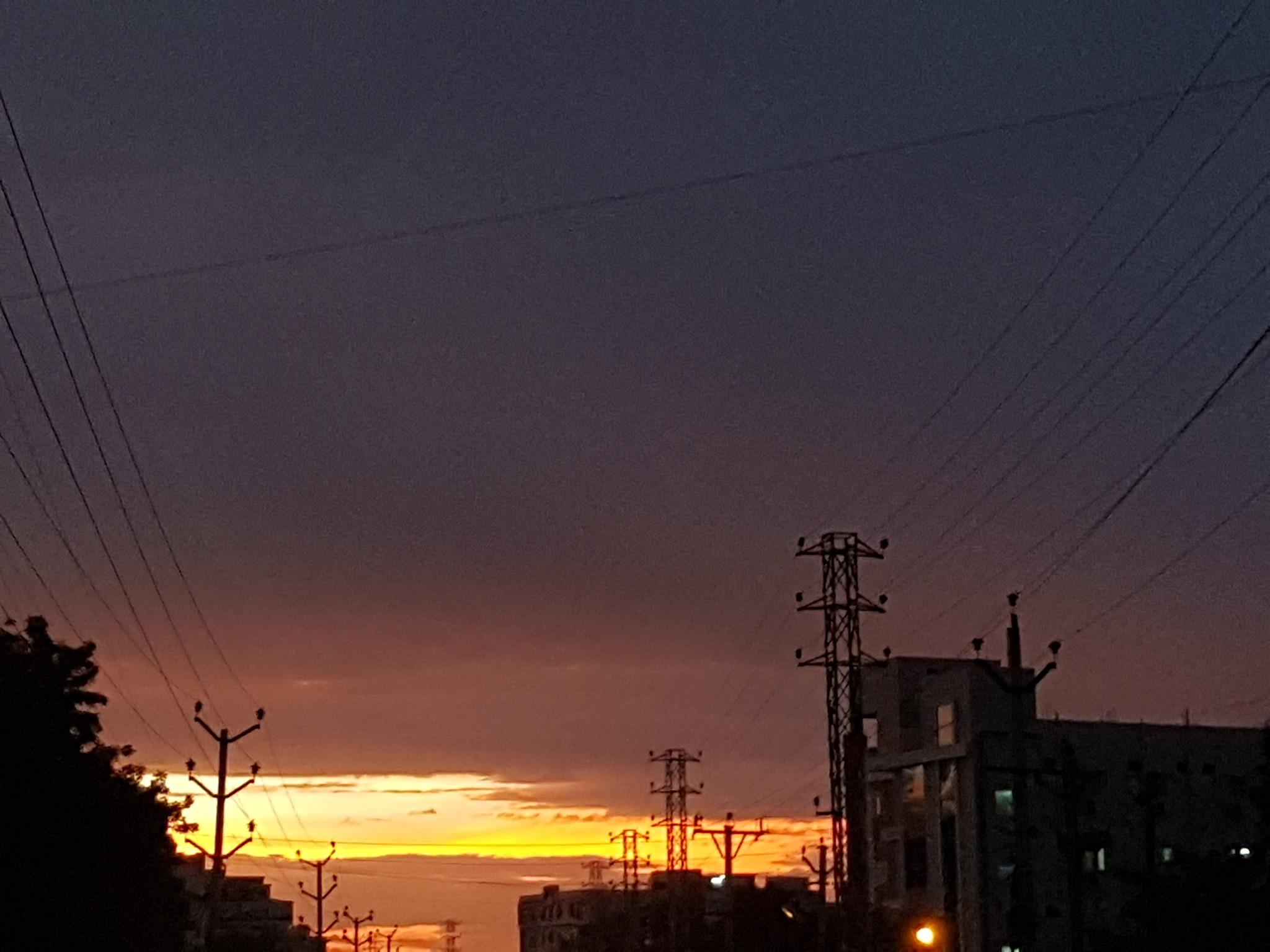 Image ID: 201252
