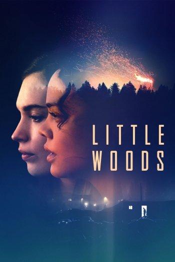 Little Woods