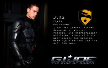 Sub-Gallery ID: 2941 G I Joe