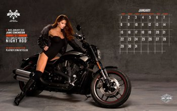 Preview Harley Davidson