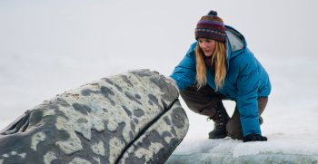 Preview The Big Miracle