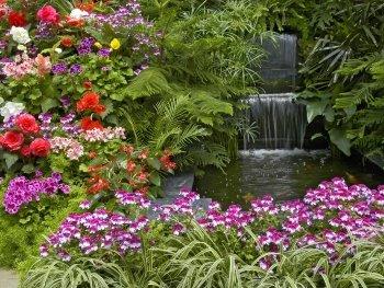 Preview Gardens