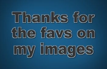 Preview Image 331561