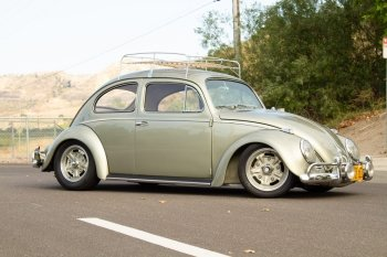 Preview Beetle