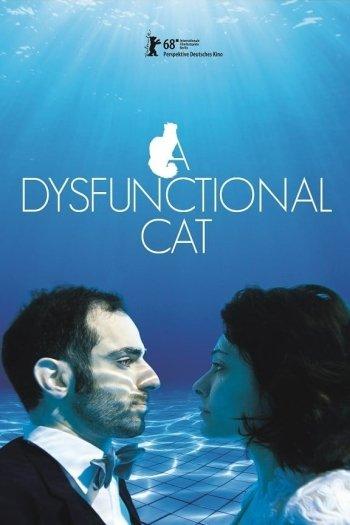 A Dysfunctional Cat