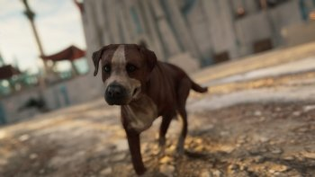 Preview Image 445771
